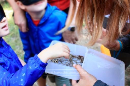 Alguna propuesta para disfrutar con los niños en Cuenca este verano.